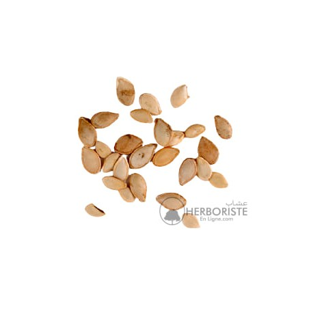 Graines de Coloquinte - Afarziz Hadja - 10 graines - زريعة الحدجة