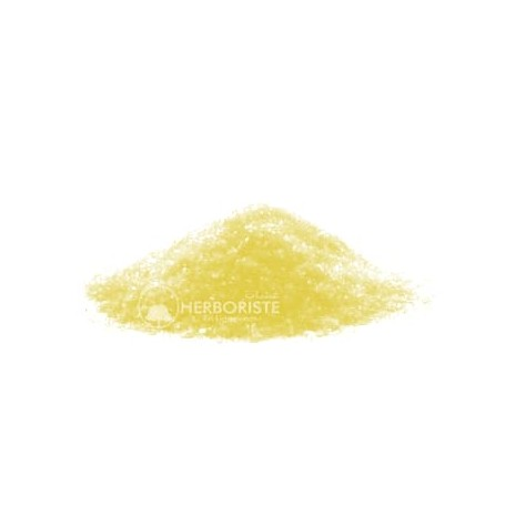 Zaazaa couleur jaune - 20g - زعزاع الأصفر