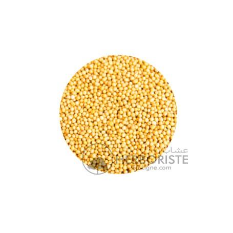 Moutarde jaune - Khardal - 20g