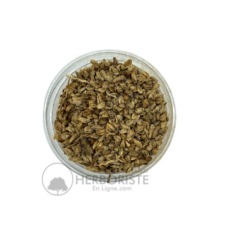 Tongkat Ali en poudre - Haute dose - 100g - تونغكات