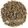 Graines de Persil du Maroc - 20g - حبوب البقدونس