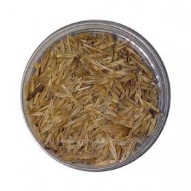 Graine De Henné (Lawsonia inermis) - حبوب الحناء