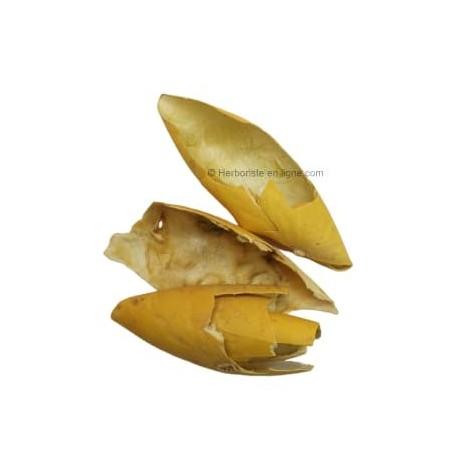 Peau de Coloquinte - 20g