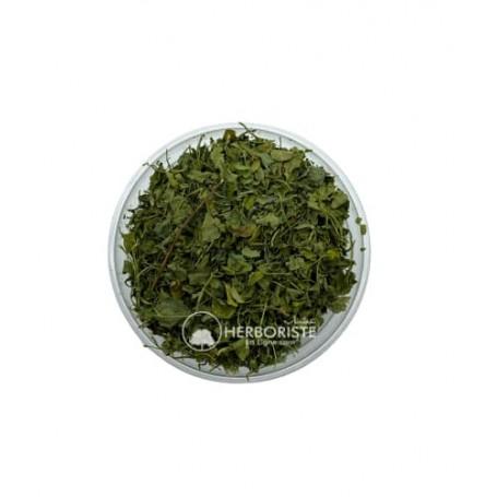 Feuilles séchées de fénugrec - Methi - Trigonelle - 100g