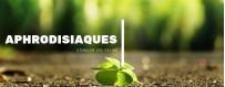 Catégorie Hennés - herboriste en ligne : Henné Naturel En Feuille - Awrak lhana - 20g - أوراق الحنة , Encens Crème - Ralia - ...